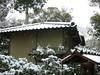 日本京都行屋與樹之美DSCN5458
