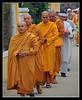 Funeral procession 3 (Jom Manilat) Tags: asian vietnamese hoian funeral monks aficionados funeralprocession vietnambuddhist aficinonados