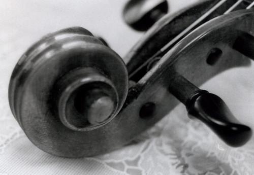 Scroll of Violin