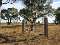 on the Bogan Gate