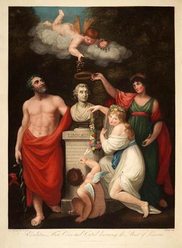 02a-Esculapio Ceres Flora y Cupido haciendo honor a Linneo