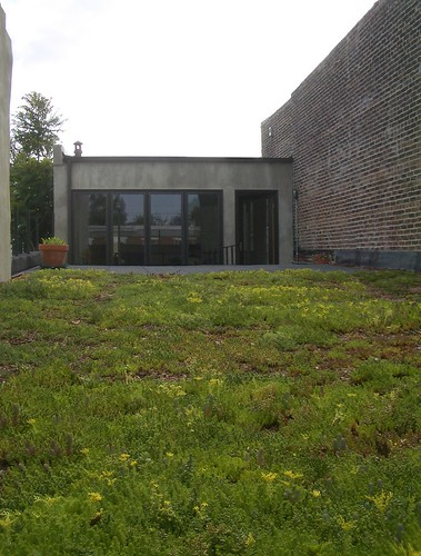 green_roof_from_front[1] (2) by rossfindly.
