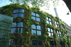 Paris, vertical gardens