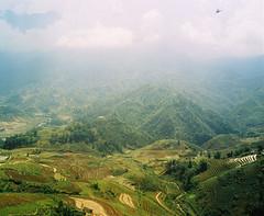Amani Willett - Vietnam - 060 (amaniwillett) Tags: mountains rural landscape asia southeastasia farming farmland vietnam farms agriculture ricefields sapa mountainous fansipan ruralasia ruralvietnam ricecrops