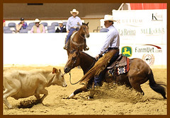 NCHA competion ~ Cutting Horse at work (Bettina Woolbright) Tags: horse cowboy cattle competition rodeo ftworth fortworth bettina willrogers canon85mmf18 ftworthtexas willrogerscoliseum canon85mm ncha cuttinghorse woolbright canon40d nationalcuttinghorseassociation willrogersstadium bettinawoolbright woolbr8stl bettinawoolbrightcom
