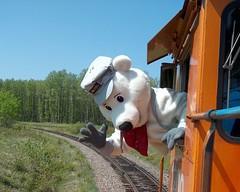 Canadian Conductor (terr-bo) Tags: bear ontario canada cute train locomotive engineer choochoo conductor choochootrain