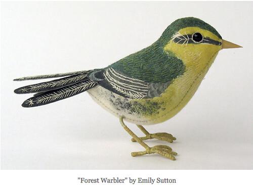 forest warbler