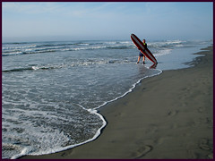 Wildwood (PHOTOPHANATIC1) Tags: surfer nj wildwood oceanimages