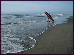 Wildwood (PHOTOPHANATIC1) Tags: surfer nj wildwood oceanimages