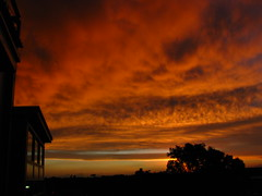 08 446 (terrybiky) Tags: sunsetsunrise