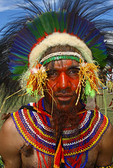 Goroka Show (Bertrand Linet) Tags: portrait shells coral festival facepainting feathers feather shell makeup tribal papou tribes png tribe papuanewguinea papua ethnic kina maquillage visage plumes headdress singsing plume huli papu tribu oceania goroka etnico pidgin tribus oceanie ethnique papuaneuguinea papuanuovaguinea  gorokashow papuan papouasie melanesian papuans  papusianovaguin papanuevaguine papuanyaguinea wigmen hulis   papuanewguineapicture papuanewguineapictures papuanewguineanpeople remotetribe papanuevaguinea makeupgoroka bertrandlinet