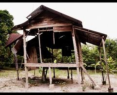 teratak usang (side view) (emadivine) Tags: wood decay ruin abandon malaysia lama pondok malay rumah hause zink perak usang tapah teratak 15challengeswinner beginnerdigitalphotographychallengeswinner beginnerdigitalphotographychallengewinner achallengeforyou thechallengefactory emadivine fotocompetition fotocompetitionbronze fcbronze tinggalan ladangponggor