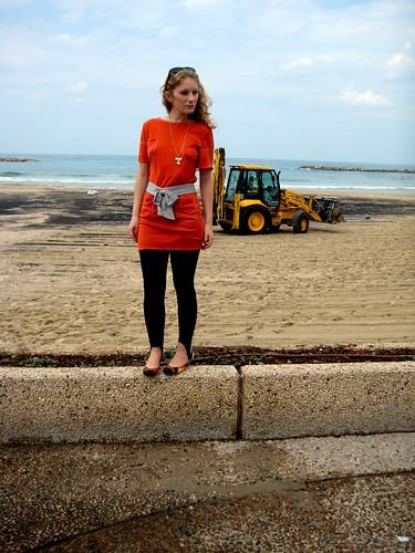 מנסים לנקות את החוף