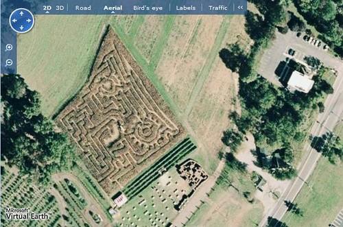 Wightmans Farms Corn Field Maze