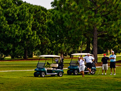 FL - Golf - Chip Shot - 10-17-08 (mosley.brian) Tags: trees red white black green grass golf florida golfing fl pinetrees clearwater golfcarts clearwaterfl donaldross belleviewbiltmore chipshot clubcars belleviewbiltmoregolfclub donaldrossgolfcourse