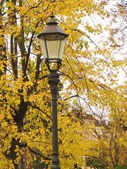 Ruska Helsingissä (Anna Amnell) Tags: autumn helsinki fallcolors autumncolours kirkko puisto vanha vanhakirkkopuisto ruska