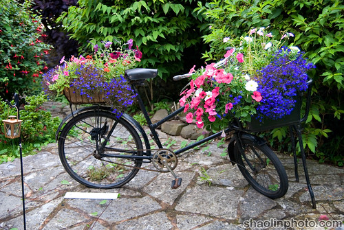 Bike Flower Pot