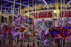 Disney - Cinderellas Golden Carousel (Express Monorail) Tags: travel walter vacation usa colors america wonder geotagged fun psp orlando nikon colorful princess florida availablelight f14 magic dream sigma wed elias carousel disney mickey disneyworld fantasy mickeymouse handheld imagine theme cinderella wish orangecounty wdw waltdisneyworld walt magical kissimmee themepark magickingdom fantasyland waltdisney wdi 30mm lakebuenavista imagineering disneyprincesses cinderellasgoldencarousel d40 waltdisneyworldresort disneypictures disneyparks disneyatnight disneyafterdark disneypics expressmonorail disneyphotos paintshopprophotox2 joepenniston disneyphotography disneyimages geo:lat=28420128 geo:lon=81581087