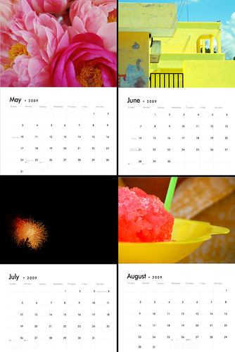 2009 calendar combo 2