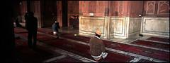 (bradford daly) Tags: panorama india delhi prayer praying panoramic xpan jamamasjid fridaymosque
