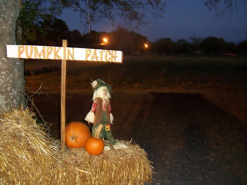 Pumpkin Patch and corn maze my husband and I went to last October