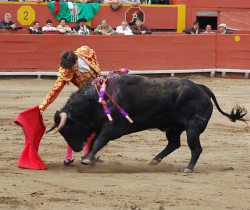 Galan y toro Galante en Lima