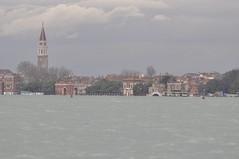 NIKON D90 - Acqua alta a Venezia e Lido m1,56 s.l.m. (01/12/2008)