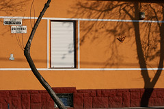 Cserkesz utca (sonofsteppe) Tags: street winter shadow urban orange detail building tree art window lines horizontal wall facade 50mm daylight hungary exterior outdoor painted budapest vivid nobody scene explore shutter series visual exploration thewall fragment bough ilmuro streetplate wallscape sonofsteppe pusztafia kbnya utcatbla streetplatesofbudapest cserkeszutca urbanlifeoftrees