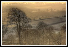sunrise (bobellistuck) Tags: morning trees mist landscape countryside spring cornwall fields 2009 tranquil hdr bodmin theworldisbeautiful k10d pentaxk10d vanagram bobellistuck ~lovephotography~ mwqio