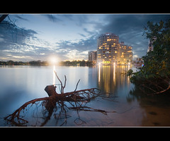 rivage royale (Pawel Papis Photography) Tags: wood longexposure light sunset building tree water night clouds composition reflections river gold evening coast brighton nightshot dynamic background australia parade qld queensland suburb limb range dri increase southport royale foreground blend rivage goldcoast nerang smoothness dynamicrangeincrease 14mm sigma1020 4215 3exposures nerangriver canon400d blendingexposures rivageroyale 75brightonparade goldcoastsuburb buildingbywater buildingbyriver