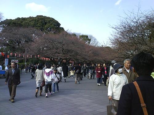 Ueno Park 03