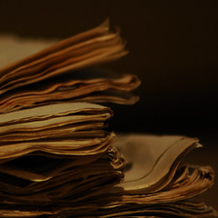archive no.2 (3:14) Tags: old buch book alt archive libro fugu archivo antiguo paginas dflickr dflickr080308 carrilllogil hikikimori 2bdasest