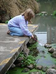 catching small fish
