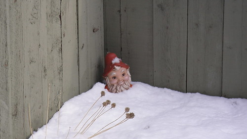 gnome in snow