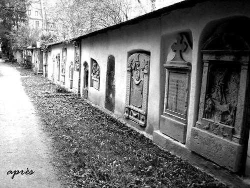 Alter Friedhof Freiburg 8