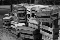 DSC02906(1)mod (iPhotography_) Tags: blackandwhite bw friedhof cemetery hamburg sw boxes ohlsdorf kisten ohlsdorferfriedhof schwarzweis