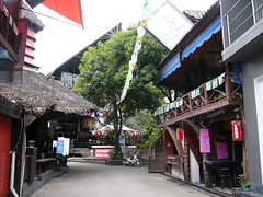 koh samui- soi green mango (soma-samui.com) Tags: travel green thailand island asia resort mango samui chaweng koh         tourguidesoma soma