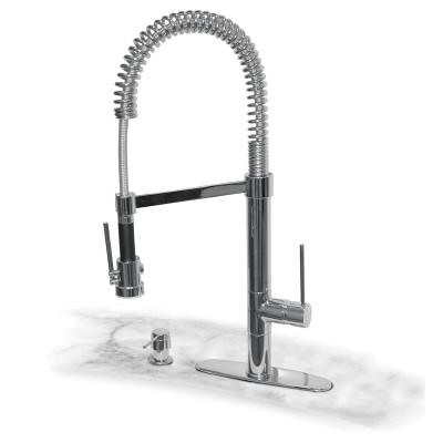 Pegasus Brushed Nickel Marylin Kitchen Faucet With Spray