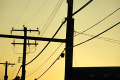 Sky Lines no.1 (alankin) Tags: sky 15fav geometric lines dusk pennsylvania curves nikond70s lookingup powerlines nikkor ontheroad fromthecar route3 westchesterpike havertown utilitypoles 75views niknala afvrzoom18200mmf3556gifed 4may2008 1900065amu