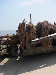 IMGP0258 (paulsyak) Tags: kayak lewes delawarebay beachplumislandshipwreck