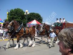 2008-08-15 State Fair 010