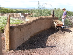 Light Weight Adobe wall (bartswindow) Tags: mud adobe pear lime prickly papercrete