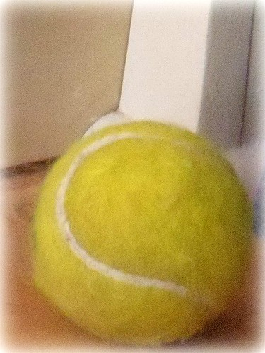 doesn't everyone need a picture of a tennis ball?