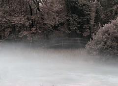prime nebbie (mizaweb) Tags: italy italia fiume nebbia acqua autunno fvg friuli livenza santissima polcenigo 1442 sorgente e420