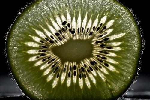 Backlit Kiwi