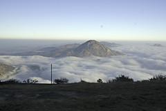 Nandi Hills..