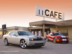 Dodge Challenger SRT8 vs. Ford Shelby GT500 (q8500e) Tags: usa hot ford cool power badass bad shelby dodge vs mustang 2009 challenger gt500 srt8 over5000views q8500e