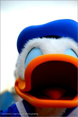 A big smile (unlimited inspirations) Tags: park blue orange macro love smile face mouth fun happy hongkong duck play creative disney donaldduck hongkongdisneyland