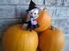 witchy girl (merwing✿little dear) Tags: halloween scarlet pumpkin sweet spell blythe petite