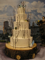 Winter Solstice Cake (Josef's Vienna Bakery) Tags: wedding food dessert marisa weddingcake nevada tahoe bakery reno sparks hess iphone josefs marisahess
